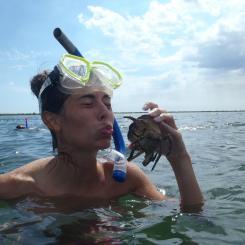 Snorkeling Panama City 21012
